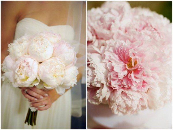 Newport Wedding Glam peonies