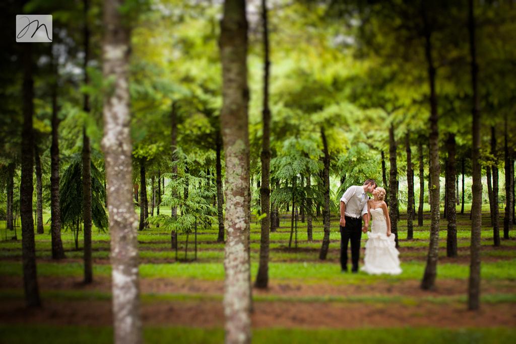 Forest Bride Groom Romance