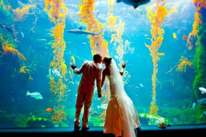 Newport Wedding Glam under the sea