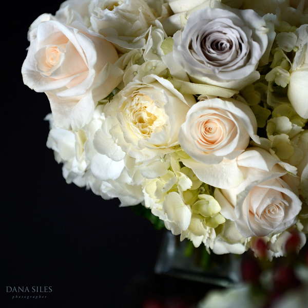 __DANA_SILES_PHOTOGRAPHER_LauraBruceD005DanaSiles110714WM_low